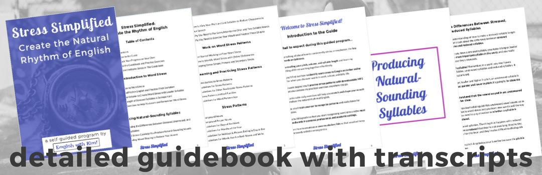 Stress Simplified - Detailed Guidebook with Transcripts